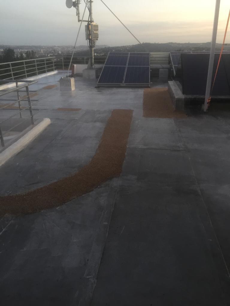 Roof Waterproof Paint